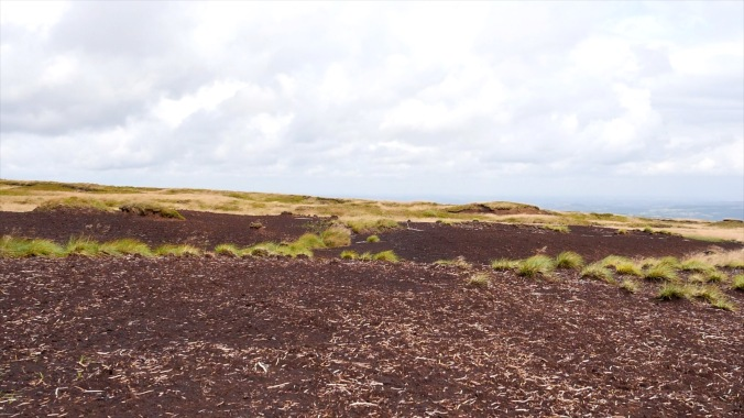 Peat Degradation in the Peak District